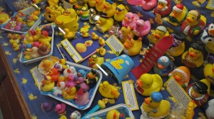 The Rubber Duckie Collection