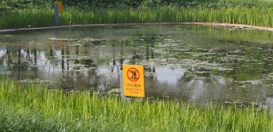 The sign announces the pond jumping