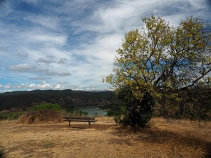 The bench on Fairmont Ridge - Lake Chabot in the background.