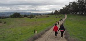 Dogs on Fairmont Ridge