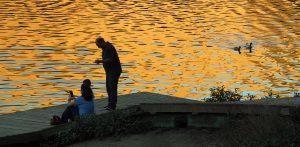 Lake Chabot Evenings
